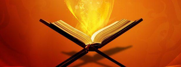 BİR KİTAP DAHA İNSEYDİ !.. (Furkan Suresi 30)