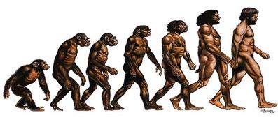 Evrim Teorisi Tanrı'nın Varlığıyla Çelişir Mi?