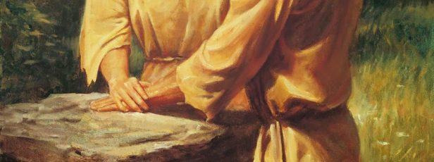 İnsanlık Adem ve Havva'dan mı Yaratılmıştır? Havva'nın Adem'in Kaburga Kemiğinden Yaratıldığı İddiası Kuran'a Göre Doğru mudur?